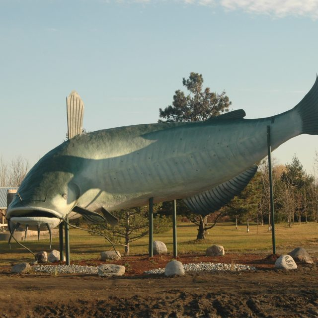 Ride Idea: Run to Dunnville Mudcat Fest