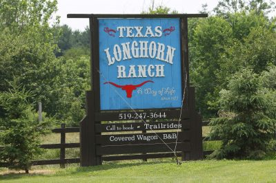 Texas Longhorn Ranch