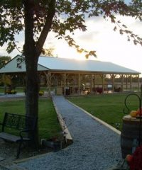 Erie Shores Vineyard