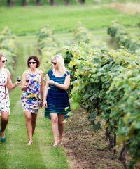 Quai Du Vin Estate Winery