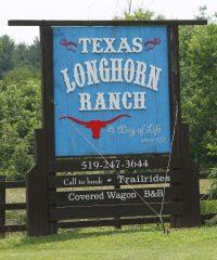 Texas Longhorn Ranch