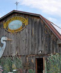 Hillman Marsh Conservation Area
